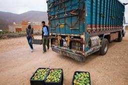 Ladung in den bereitstehenden Lastwagen